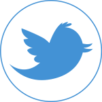 flow-twitter-circle-icon-blue-logo-flat